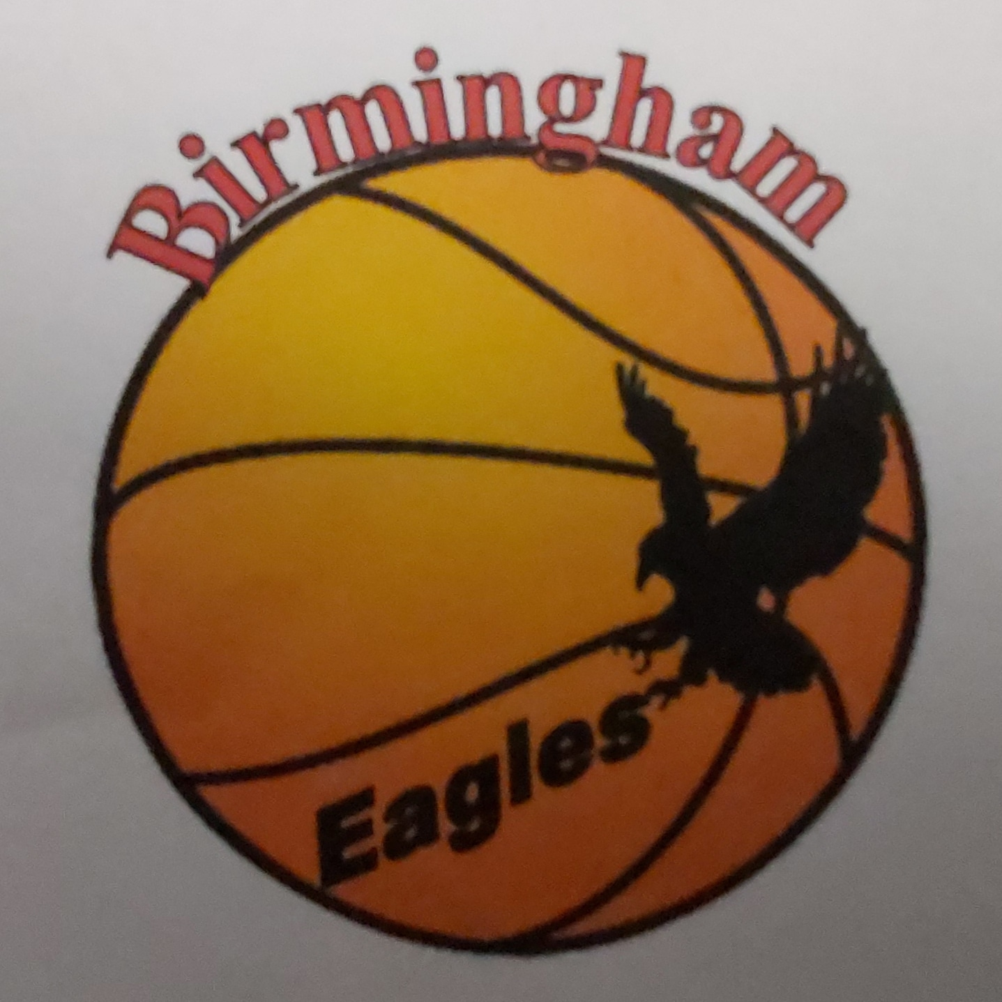 Birmingham wheelchair basketball