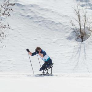 Nordic skier on a sit ski with poles